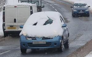 stupid driver