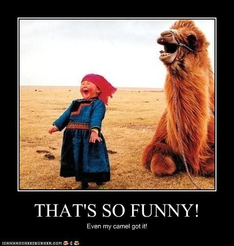 funny animal captions capshunz