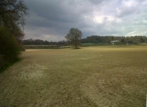 Looks like rain....